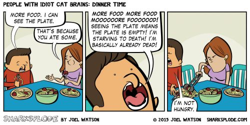 2015-07-14-sharksplode-people-with-idiot-cat-brains-dinner-time